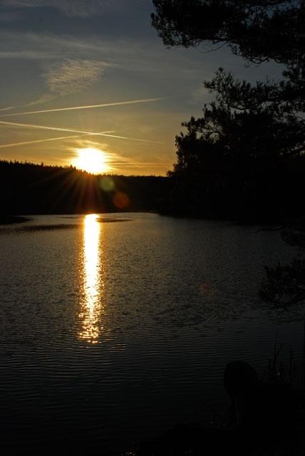 wyprawy-na-ryby-z-przewodnikiem-www.przewodnicywedkarscy.pl-szwecja.jpg