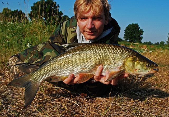 40 - boleń - www.przewodnicywedkarscy.pl - wyprawy na ryby.jpg