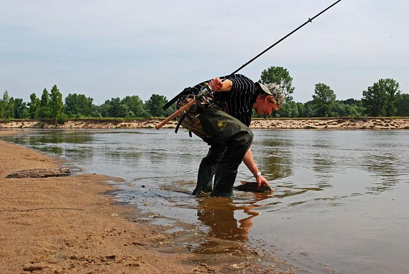 43 - boleń - www.przewodnicywedkarscy.pl - wyprawy na ryby.jpg