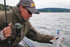 boleń - www.przewodnicywedkarscy.pl - wyprawy na ryby.jpg