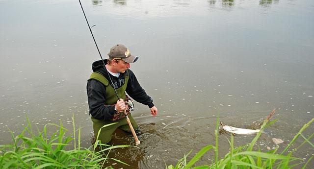 hol1 - boleń - www.przewodnicywedkarscy.pl - wyprawy na ryby.jpg