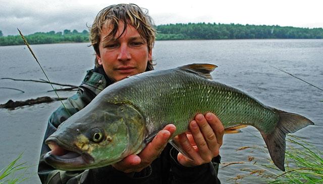 mat-bolek - boleń - www.przewodnicywedkarscy.pl - wyprawy na ryby.jpg