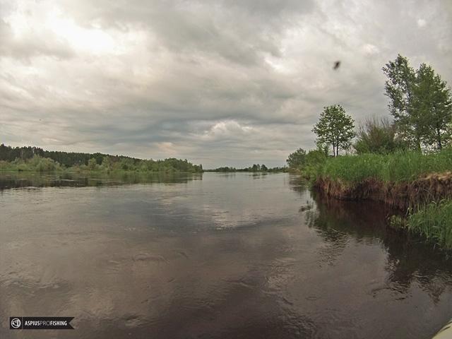 wyprawy-na-ryby-z-przewodnikiem-www.przewodnicywedkarscy.pl.jpg