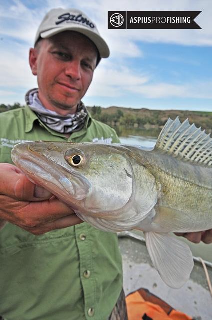 ebro-wyprawy-na-ryby-wwwprzewodnicywedkarscy-31.jpg