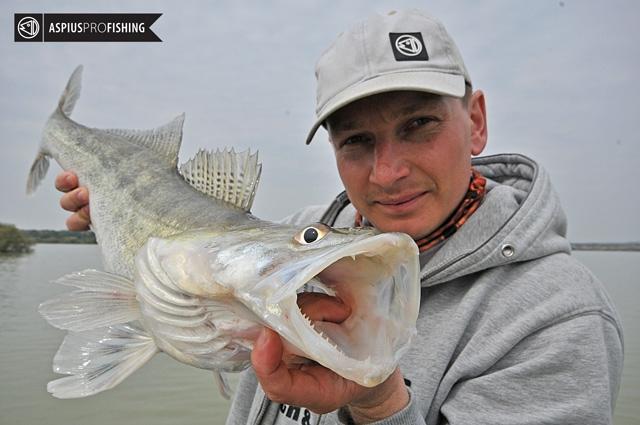 ebro-wyprawy-na-ryby-wwwprzewodnicywedkarscy-68.jpg