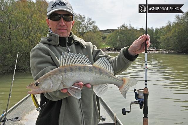 ebro-wyprawy-na-ryby-wwwprzewodnicywedkarscy-69.jpg