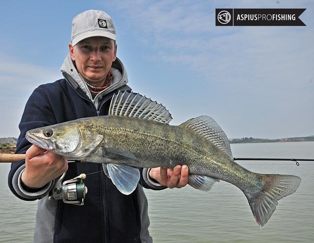 ebro-wyprawy-na-ryby-wwwprzewodnicywedkarscy-70.jpg