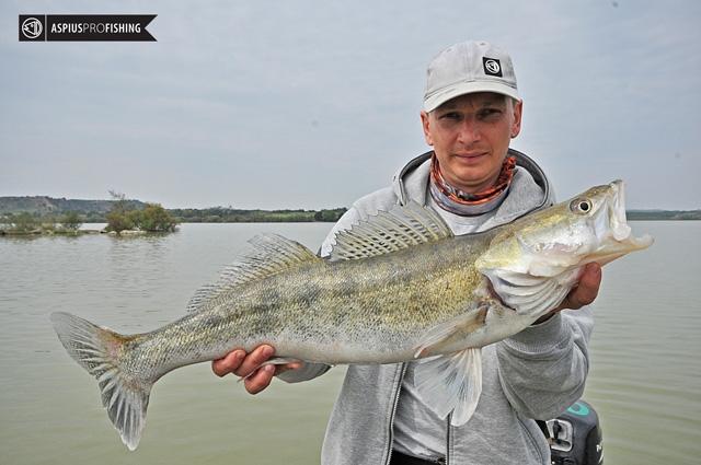 ebro-wyprawy-na-ryby-wwwprzewodnicywedkarscy-71.jpg