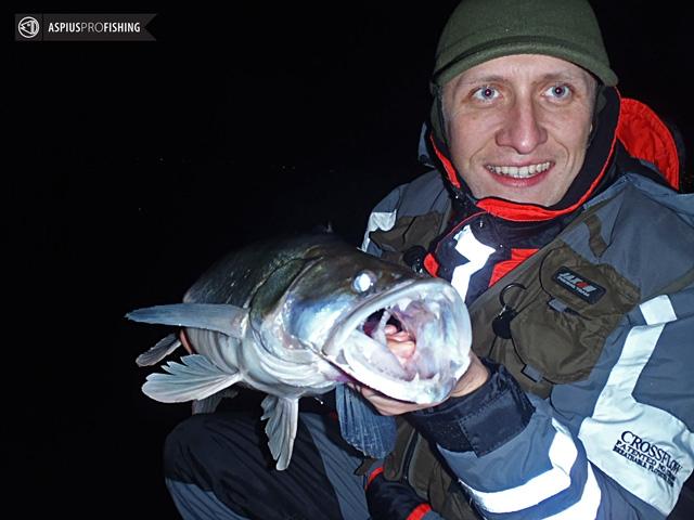 wyprawy-na-ryby-z-przewodnikiem-wwwprzewodnicywedkarscypl-sandacze.jpg