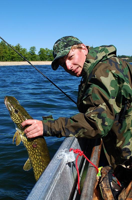 mat - szczupak - www.przewodnicywedkarscy.pl - wyprawy na ryby.jpg