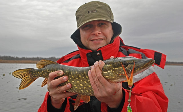 szczupak-piotrek - szczupak - www.przewodnicywedkarscy.pl - wyprawy na ryby.jpg