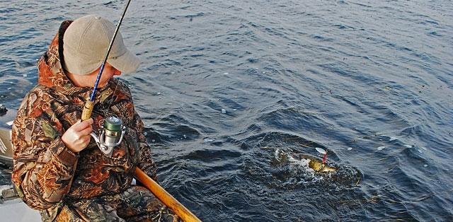 waleczny-szczupak - szczupak - www.przewodnicywedkarscy.pl - wyprawy na ryby.jpg