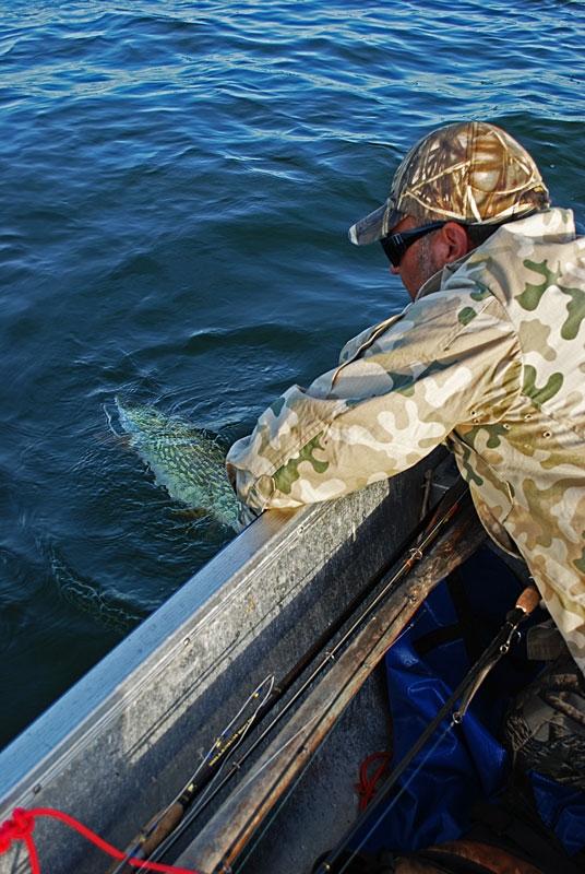 wypuszczanie - szczupak - www.przewodnicywedkarscy.pl - wyprawy na ryby.jpg