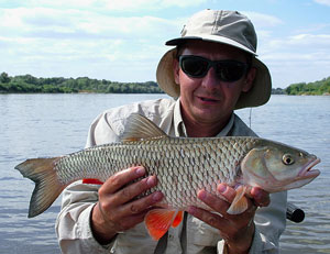 Klen | Fishing guide - guidedfishing.eu