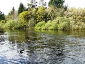 ashford-river-1