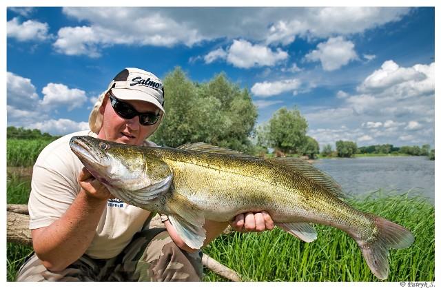 Odra - sandacz - www.przewodnicywedkarscy.pl - Wyprawy na ryby