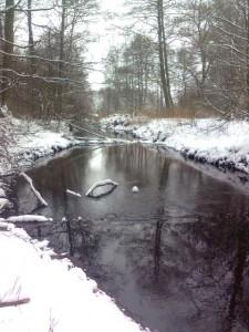 Mołstowa - wspaniała rzeka pstrągowa