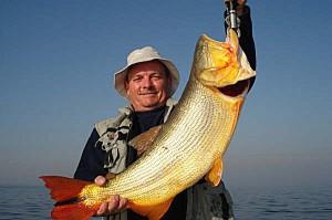 Carlos Alvarez - Argentyna - Las Termas Rio Hondo - Dorada - www.przewodnicywedkarscy.pl