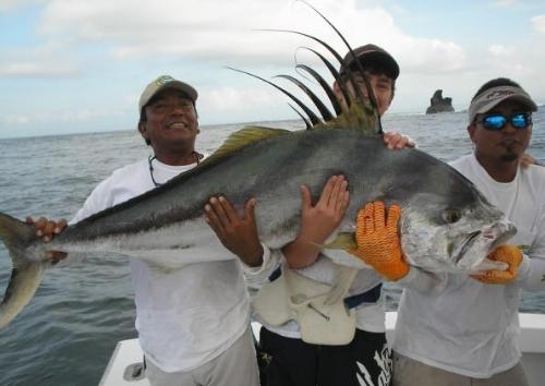 Wielki Roosterfish - Kostaryka - www.przewodnicywedkarscy.pl - Wyprawy na ryby