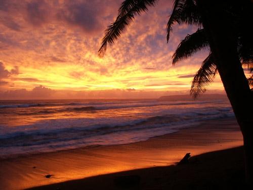 Wschód słońca - Kostaryka - www.przewodnicywedkarscy.pl - Wyprawy na ryby