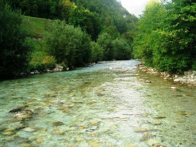 Rzeka Kamniska Bistrica - Słowenia - www.przewodnicywedkarscy.pl - Wyprawy na pstrągi