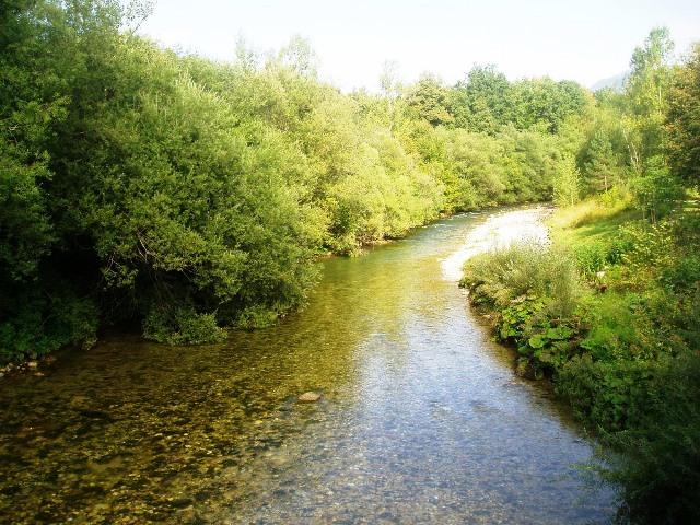 Rzeka Kokra - Słowenia - www.przewodnicywedkarscy.pl - Wyprawy na pstrągi