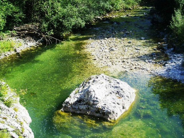 Rzeka Trebuscica - Słowenia - www.przewodnicywedkarscy.pl - Wyprawy na pstrągi
