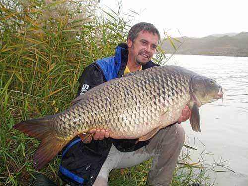 Rzeka Ebro - duży karp - www.przewodnicywedkarscy.pl - Wyprawy na karpia