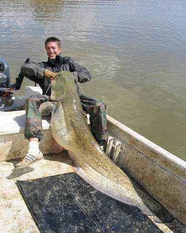 Ed Brett - Rzeka Ebro - www.przewodnicywedkarscy.pl - Wyprawy na suma
