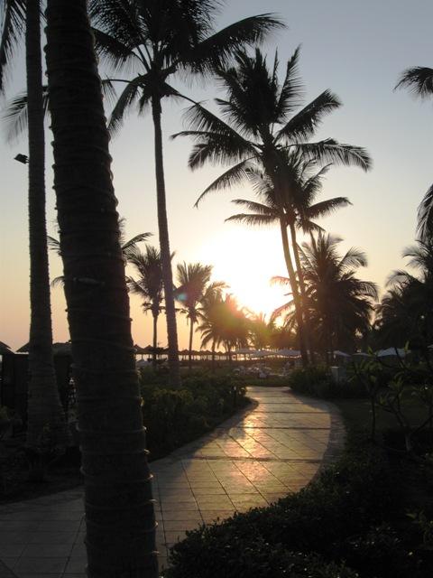 Oman - Salalah - Morze Arabskie - wyprawy wędkarskie - www.przewodnicywedkarscy.pl