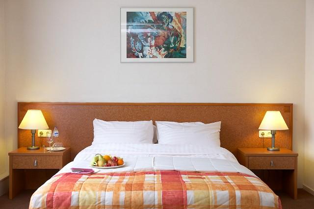 Hotel - Holandia - www.przewodnicywedkarscy.pl - Wyprawy wędkarskie do Holandii