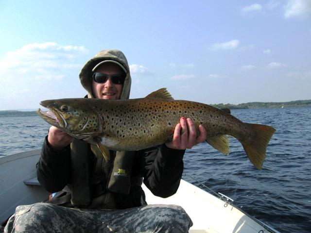 Pstrąg potokowy FEROX - Irlandia - www.przewodnicywedkarscy.pl - Wyprawy na ryby