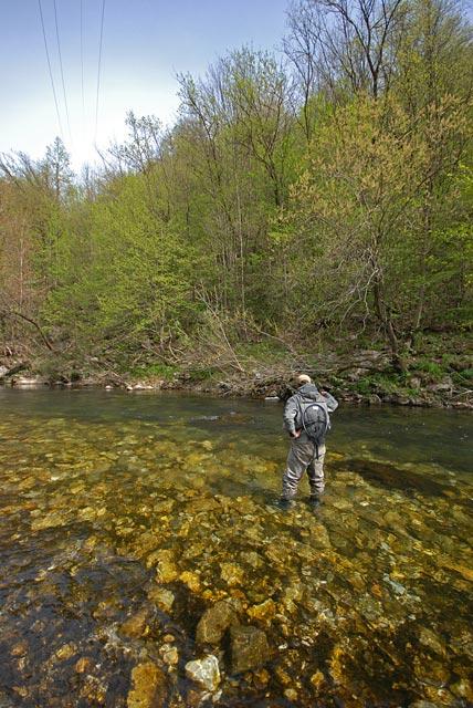 Łowienie na krótką nimfę - Słowenia - Łowienie na muchę - www.przewodnicywedkarscy.pl - Wyprawy wędkarskie