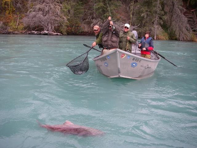 Alaska - łódź i przewodnik w akcji - www.przewodnicywedkarscy.pl - Wyprawy wędkarskie