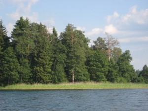 Jezioro Szelment Wielki - www.przewodnicywedkarscy.pl - Wyprawy wędkarskie