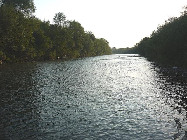 Czarny Dunajec - www.przewodnicywedkarscy.pl - Wyprawy wędkarskie
