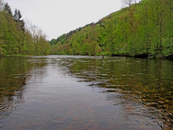 Izera Czechy - www.przewodnicywedkarscy.pl - Wyprawy na ryby
