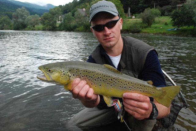 Dunajec - pstrąg potokowy - www.przewodnicywedkarscy.pl - Wyprawy na ryby