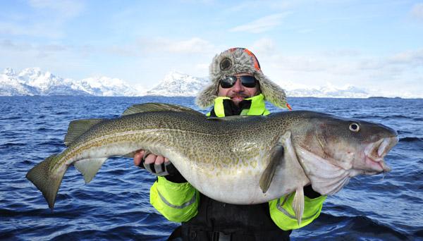 Wędkarstwo w Norwegii - www.przewodnicywedkarscy.pl - Wyprawy wędkarskie