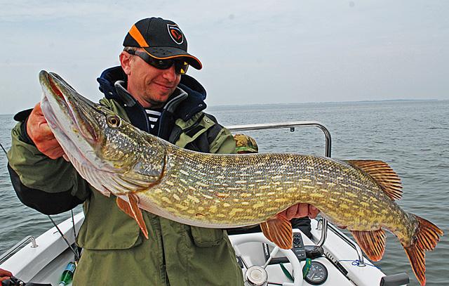 Wyprawy na ryby - www.przewodnicywedkarscy.pl - Duży szczupak - Rugia - Niemcy