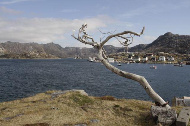 Wyprawy wędkarskie do Norwegii - www.przewodnicywedkarscy.pl - Wyspa Mageroya