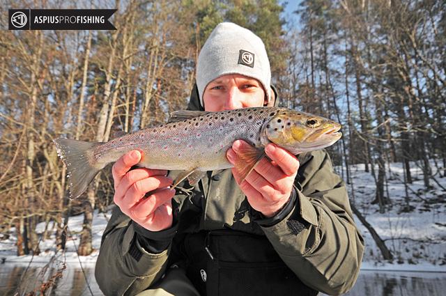 wyprawy-na-ryby-pstrag-potokowy-www.przewodnicywedkarscy.pl