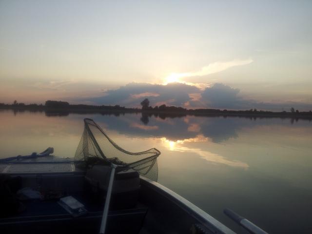 Wyprawy wędkarskie z przewodnikiem - www.przewodnicywedkarscy.pl - Jezioro Powidzkie