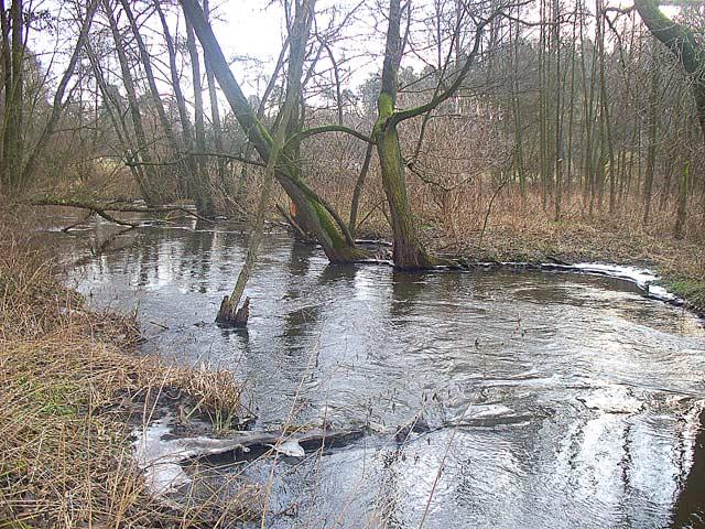 Wyprawy na ryby - Kamionka - www.przewodnicywedkarscy.pl - Wyprawy wędkarskie
