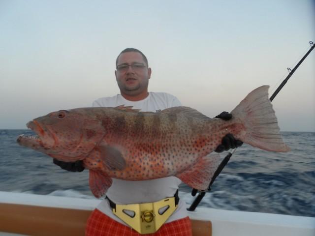 Wyprawy na ryby z przewodnikiem - www.przewodnicywedkarscy.pl - Morze Czerwone - Egipt