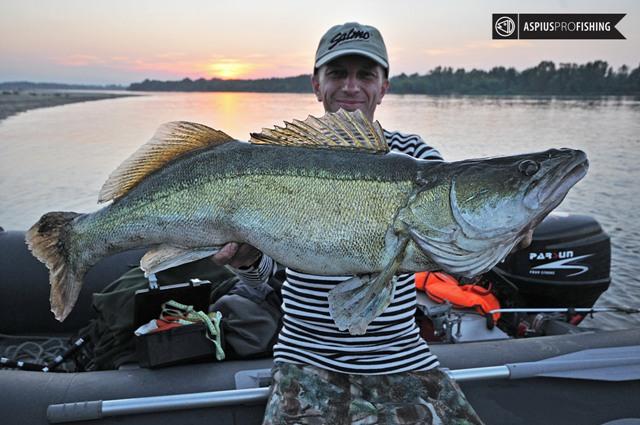 Sebastian Kalkowski - www.przewodnicywedkarscy.pl - Wyprawy na ryby z przewodnikiem