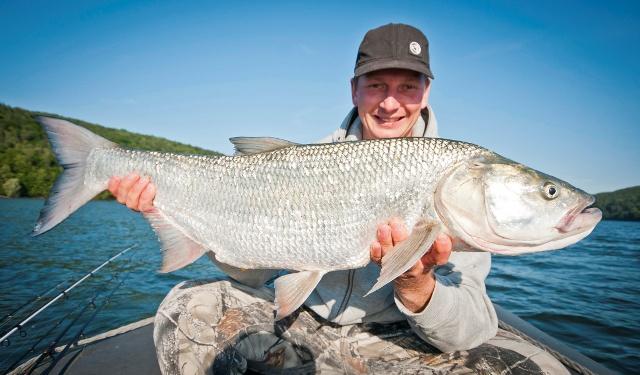 Wyprawy na ryby z przewodnikiem - www.przewodnicywedkarscy.pl - Wyprawy wędkarskie na Słowację