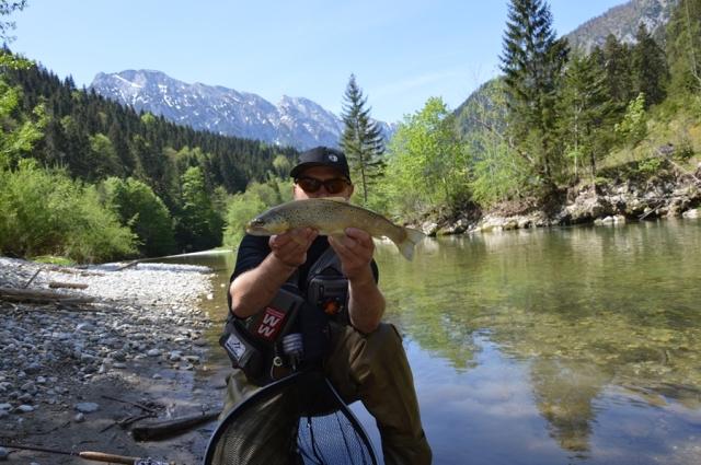 Wyprawy muchowe do Austrii - www.przewodnicywedkarscy.pl - Fly Fishing
