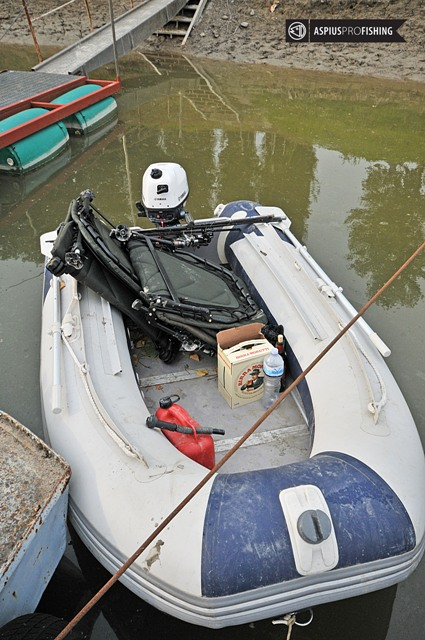 Wyprawy na ryby nad Pad - www.przewodnicywedkarscy.pl - Wyprawy na sumy