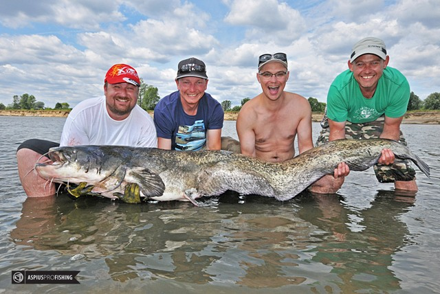 Sum 220 cm - Wisła - www.przewodnicywedkarscy.pl - Wyprawy na ryby z przewodnikiem